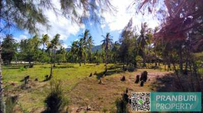 Mountain View Land Plot For Sale Near Dolphin Bay Beach Samroiyot