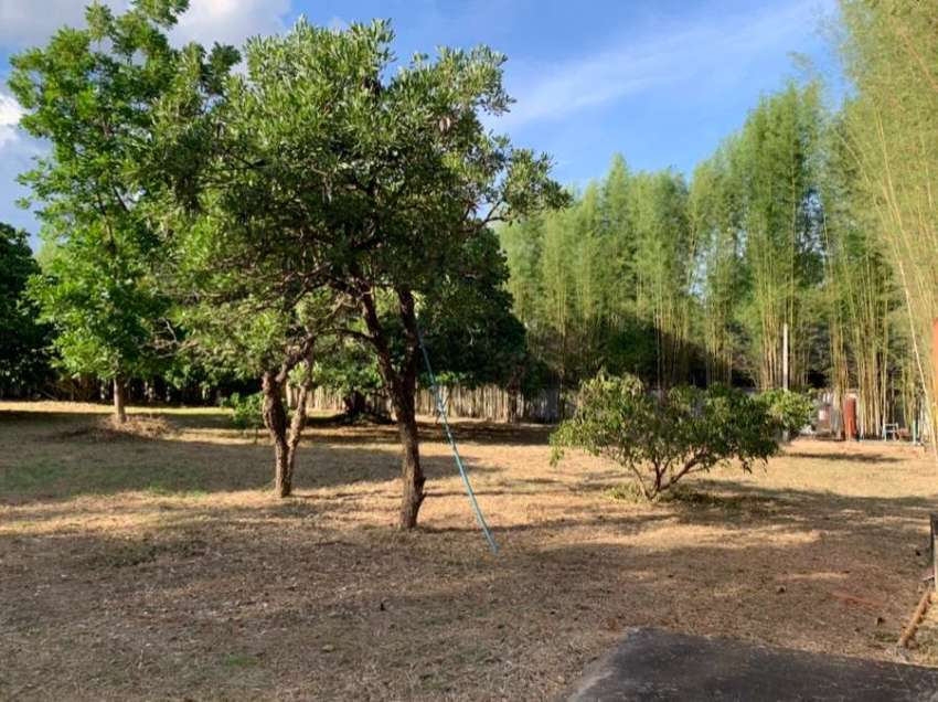 Land for sale in NamPhar, Hang Dong district.