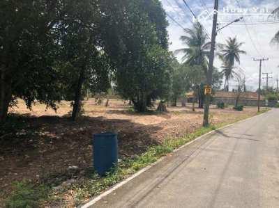 #1300   24rai on village edge in quiet position.  Farang neighbours