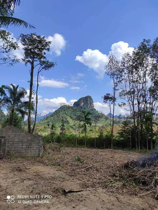Stunning Mountain View Land For Sale - Krabi - 2x Cleared Plots