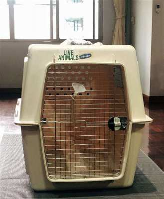 IATA Certified Dog Crate & Kennel