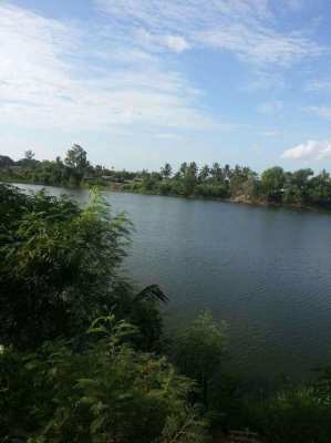 Land for sale in Nakhon Pathom (Owners Post)