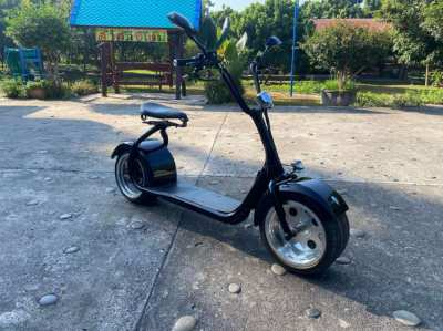 Harley Citycoco Electric Scooter
