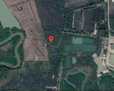 Land for sale in Nakhon Phanom (34 Rai) Owners Post