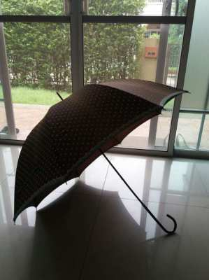 Classic Elegant Umbrella
