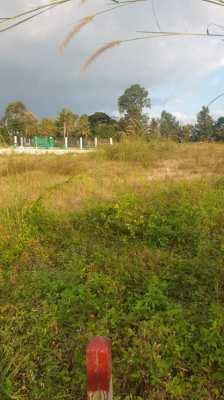 Land For Sale In Mabprachan Lake 2 Rai
