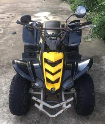 ATV E-Ton Viper 50cc (USA)