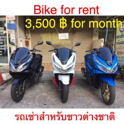 Pcx 2019 for rent