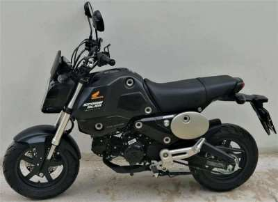 01/2021 Honda MSX GROM 125 151 km - 49.900 ฿ Finance by shop