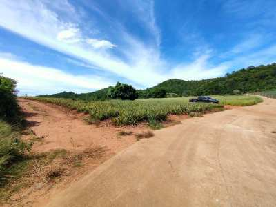 3 Beautiful Side By Side 1.5  Rai Land Plots - Owner Sell Separately