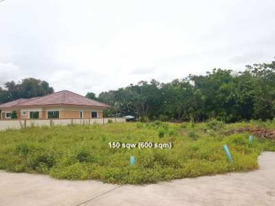 Land plots 800 meters from Mae Ramphueng beach in Rayong From 400 sqm!