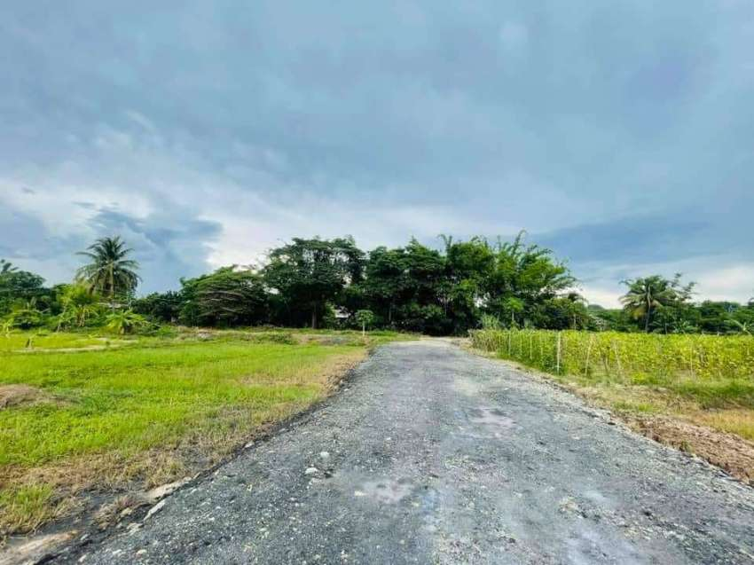 Land for sale in Mae Taeng, 35 km from Chiang Mai city.