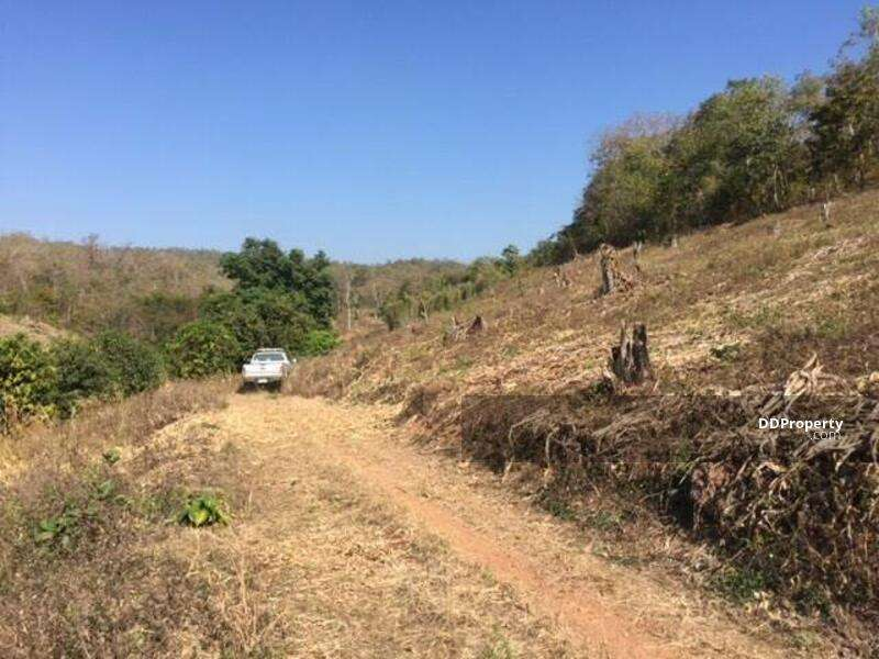 Land for Sale in Wiang Nuea Subdistrict, Pai District (12 Rai (Owners