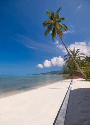 BEACH FRONT LAND FOR QUICK SALE WITH BIG DISCOUNT.