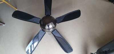 Ceiling fan black