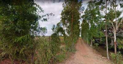 9 Rai of Land for sale in a Buriram Village