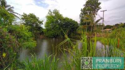 7 rai organic farm with orchards, dwelling and lakes in Pranburi