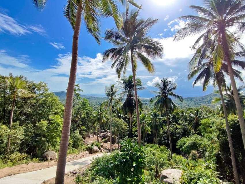 (SOLD)Beautiful Seaview land on Koh Phangan