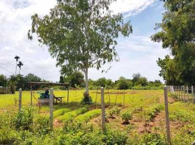 1.9 rai land  (3 040 sqm) for sale close to Suan Son beach