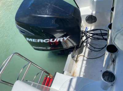MERCURY 250 XL OPTIMAX  2009