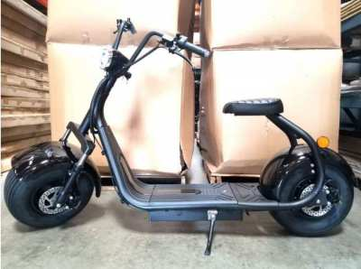 New Citycoco 2000W Fat Wide Tire Electric Scooter