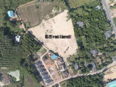 8.5 rai land close to Chakpong beach. 2,500,000 baht per rai!
