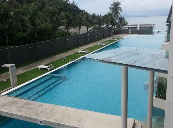 1 bed 1 bath in the beach front-pool view Condo for rent in Wongamat