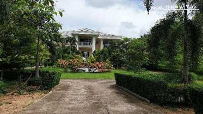 #3189    HUGE house in 6.5rai in most desirable location