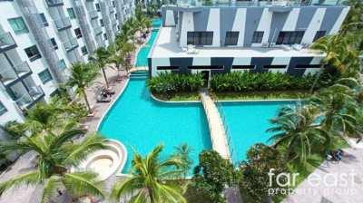 Arcadia Beach Resort 2 Bedroom Rental