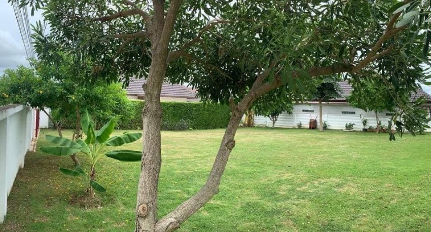 Beautiful plot of land for sale to build a house