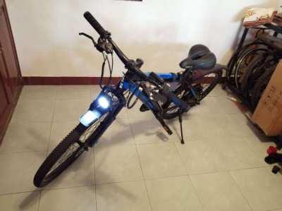 E-bike, E- bike, E- Bicycle, conversion Delta Aqua