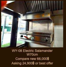 Electric Salamander  Width 70 cm