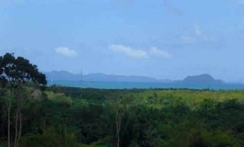 Beautiful Land For Sale Paklok Phuket